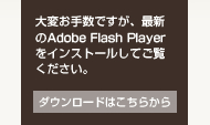 ��ς��萔�ł����A�ŐV��Adobe Flash Player���C���X�g�[�����Ă������������B�_�E�����[�h�͂����炩��